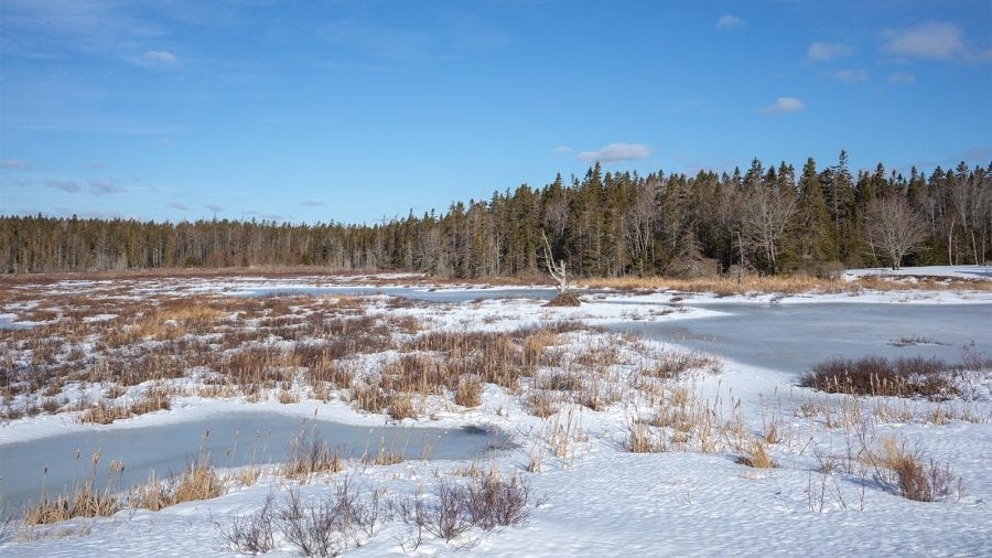Ice Fishing in A Frozen Pond at Acadia National Park