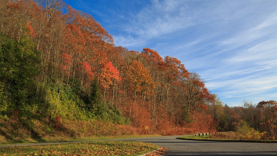 Fall Colors at Great Smoky Mountains National Park