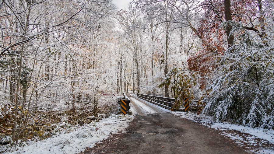 Winter Hike at Great Smoky Mountains National Park