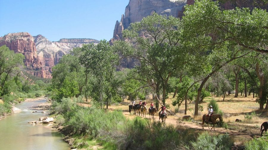 Horse Riding in Zion National Park