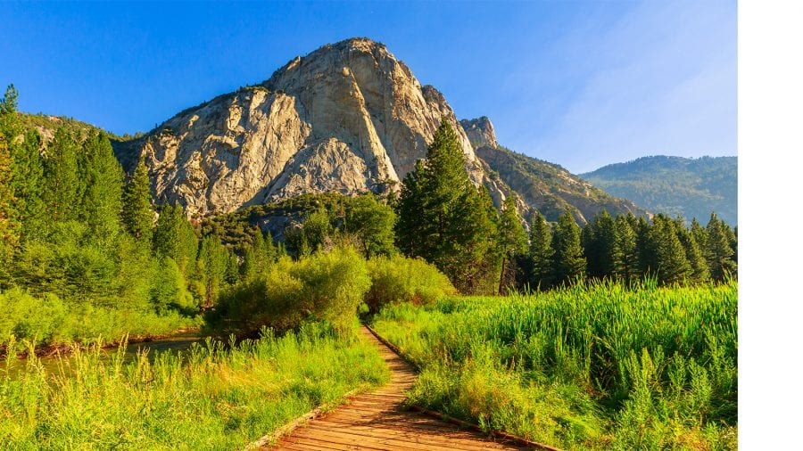 Sequoia and Kings Canyon National Park - Summer