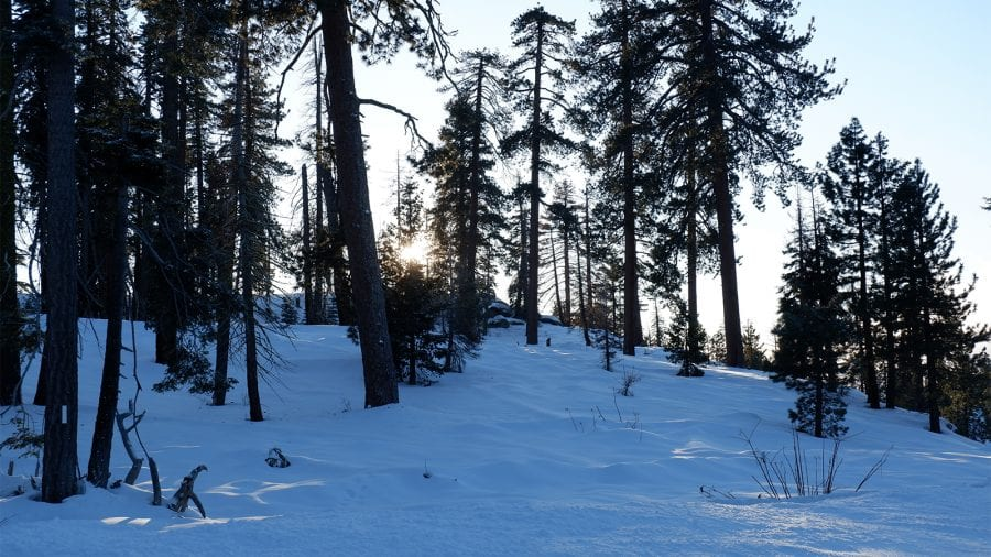 Sequoia and Kings Canyon National Park - Winter