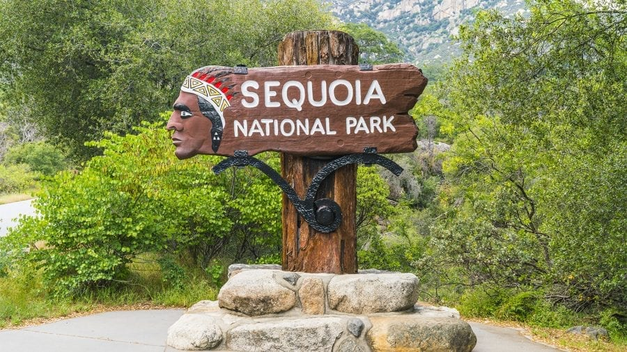 Guide to Sequoia & Kings National Park