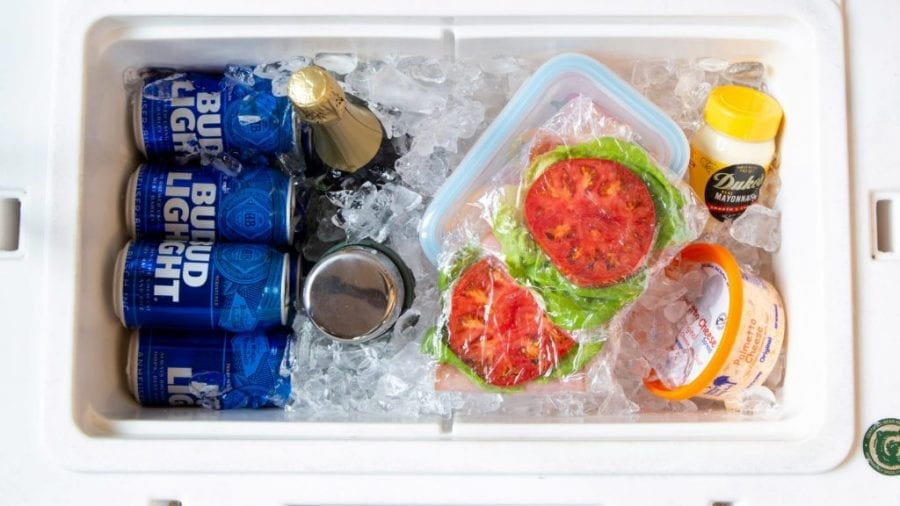 Best Cooler Ice Packs for Camping
