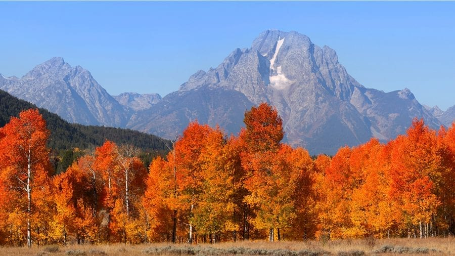 The Best Hikes in Grand Teton National Park