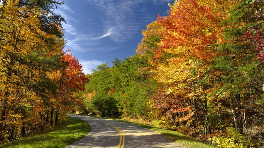Great Smoky Mountains National Park - Fall