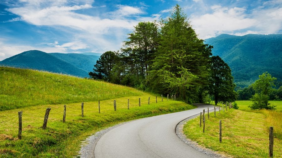 Great Smoky Mountains National Park - Summer