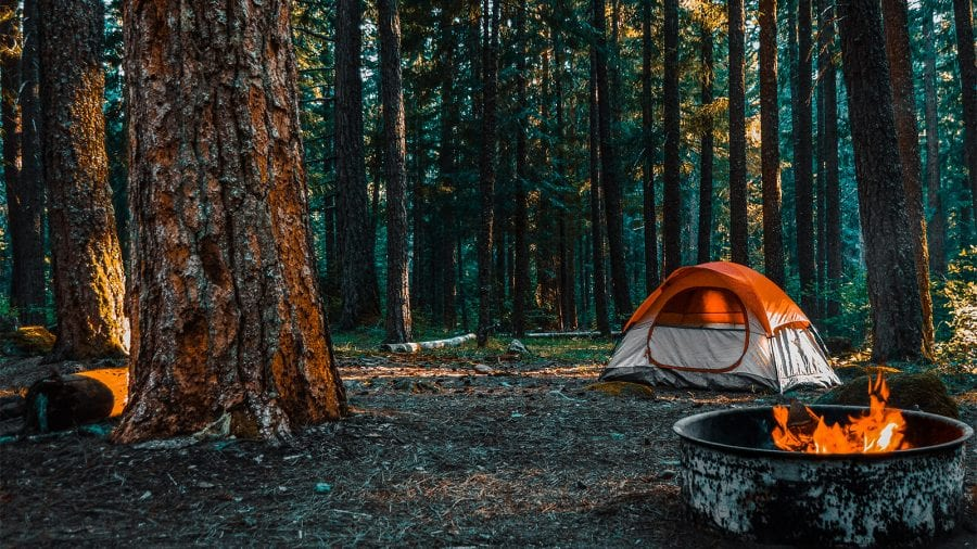 Guide to Camping in Shenandoah National Park