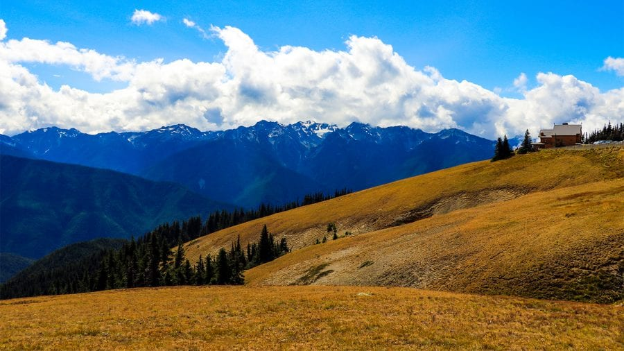 Olympic National Park Mountain View