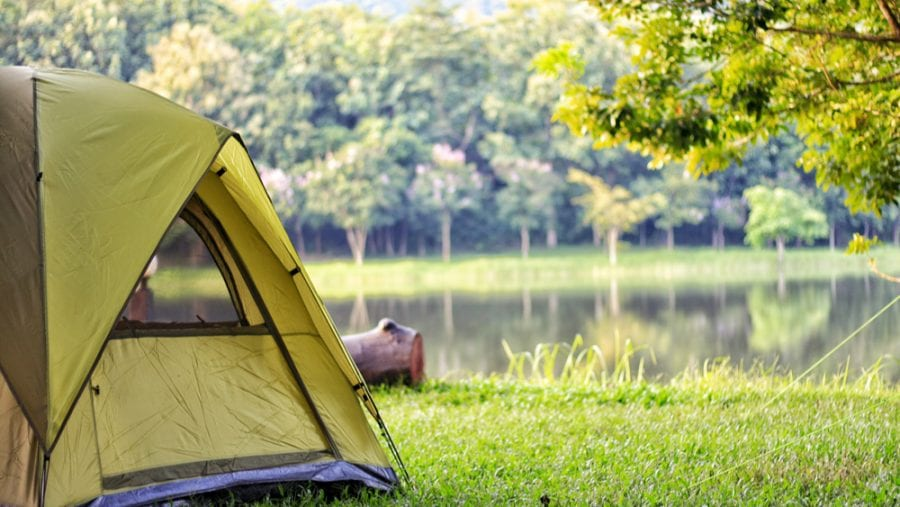 green camping tent in forest
