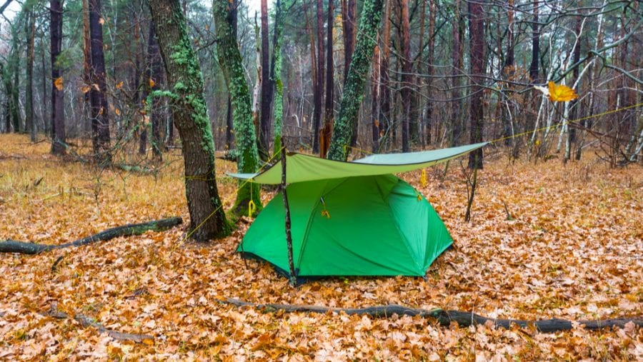 tent covered with green tarp in scenic forest