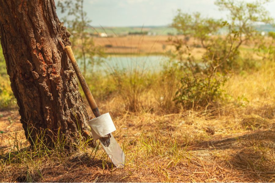 Shovel and toilet paper in the woods