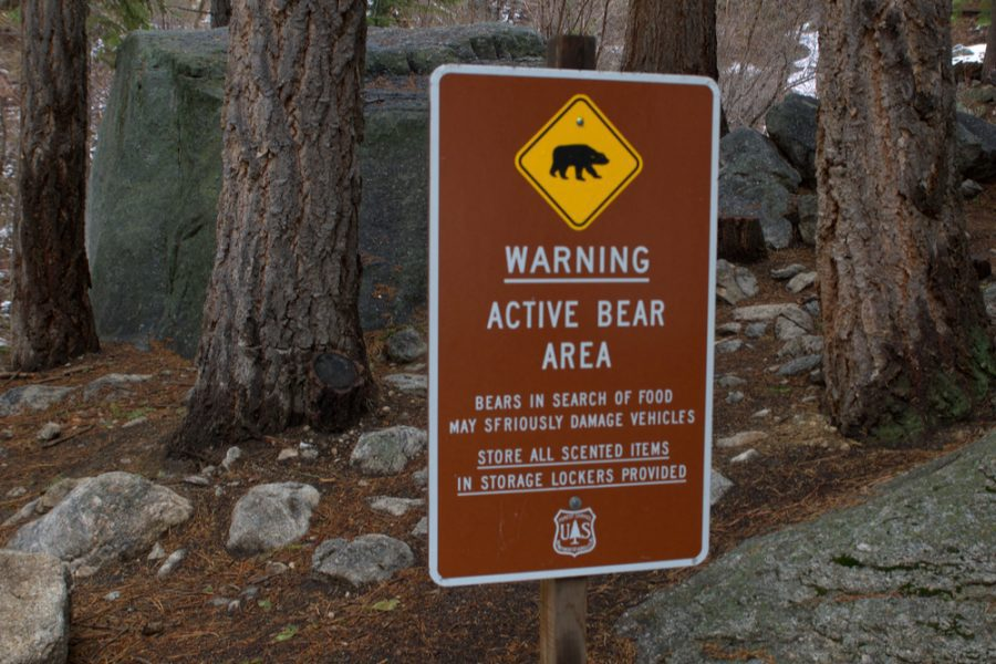 bear warning sign saying active bears are roaming in the area