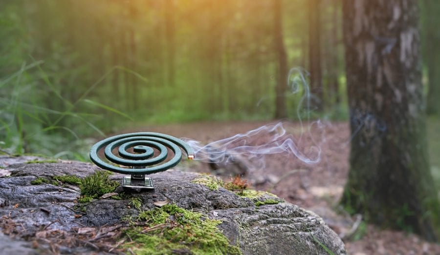 Using A Mosquito Coil During Camping